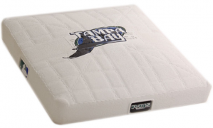 Tampa Bay Rays Authentic Mini Base