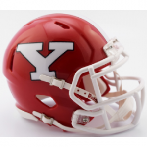 Riddell NCAA Youngstown St Penguins 2017 Speed Mini Football Helmet